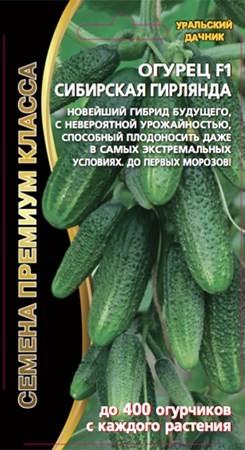 семена уральский дачник огурцы сибирская гирлянда