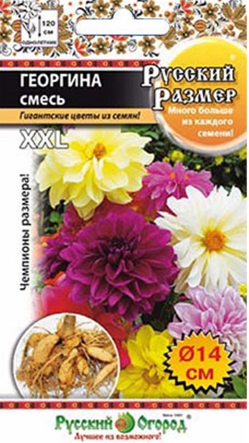 семена Xxl размер